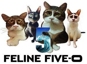 Caricaturas Pikininos Five-0